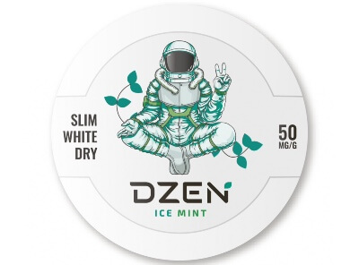 Снюс Dzen ice Mint